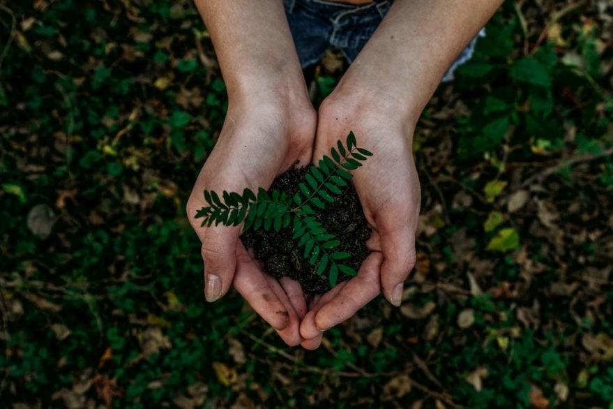 sauvons la nature