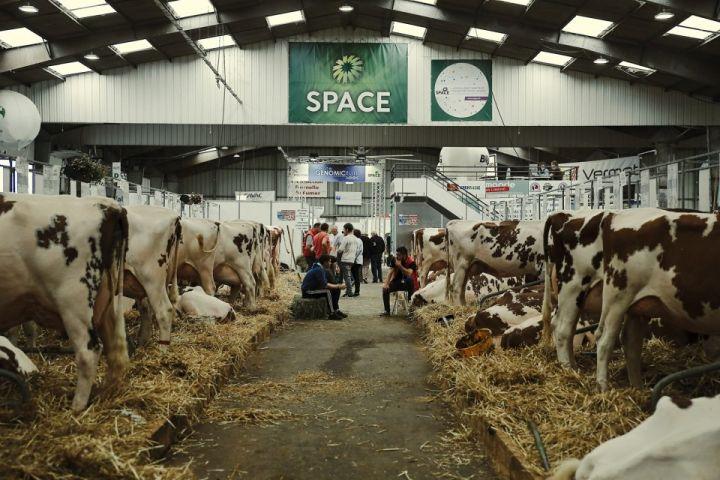 Le SPACE Rennes et les gobelets réutilisables Esprit Planète